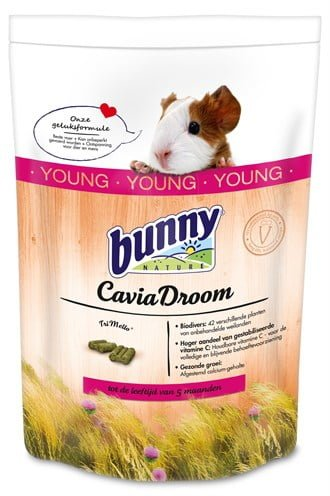 Bunny nature caviadroom young