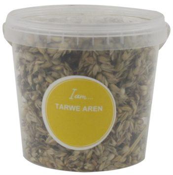 Tarwe aren