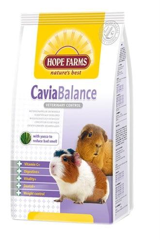 Hobbyfirst hopefarms guinea pig balance