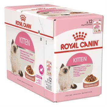 Royal canin wet kitten