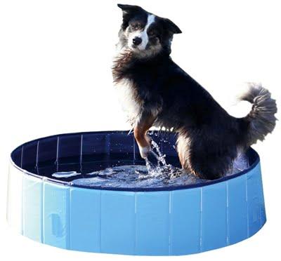 Trixie hondenzwembad lichtblauw / blauw (80×20 cm)