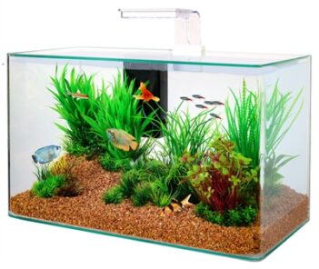 Zolux aquarium clear kit wit (32 LTR 50X25X38 CM)