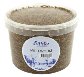 De vries meelworm (3,5 kg)