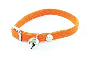 Halsband kat elastisch nylon oranje (30X1 CM)