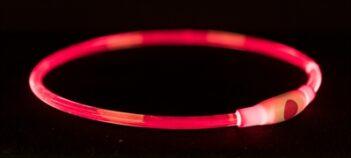 Trixie halsband usb flash light lichtgevend oplaadbaar rood (65X0,8 CM)