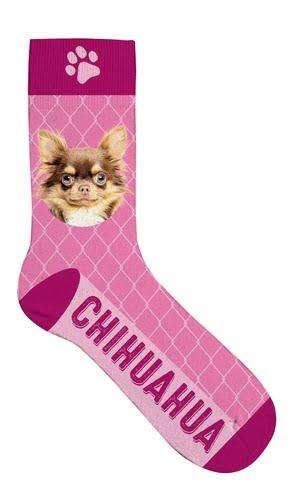 Sokken chihuahua (42-45)
