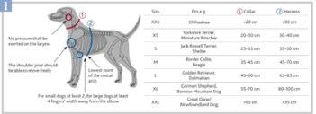 Trixie halsband hond premium bosgroen (22-35X1 CM)